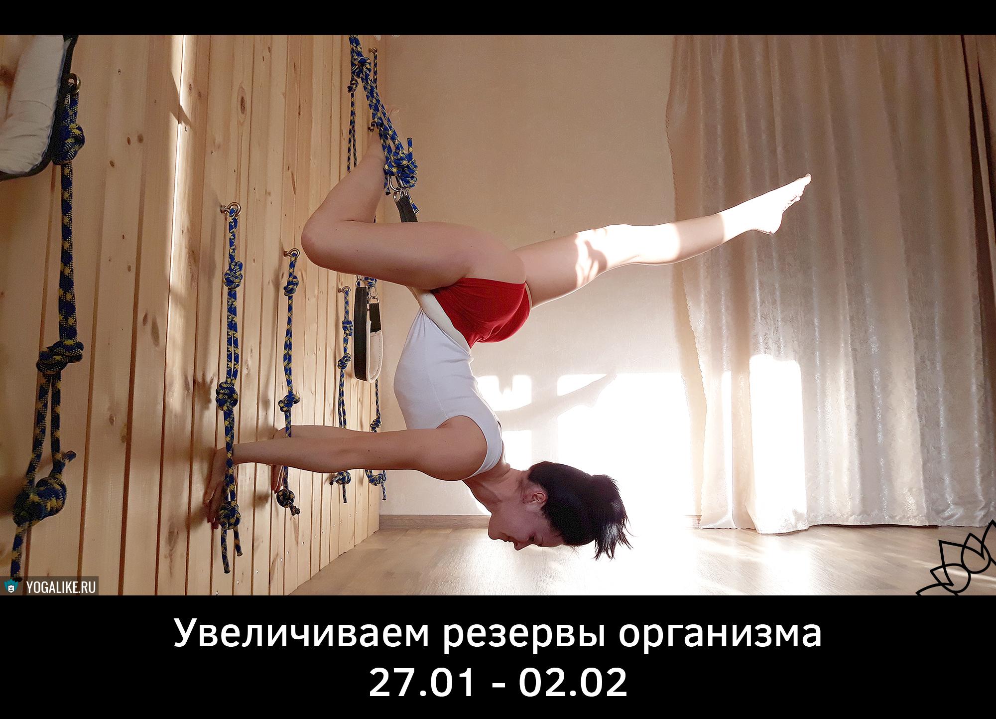 Увеличение резервов организма в Павшинской Пойме, Красногорск